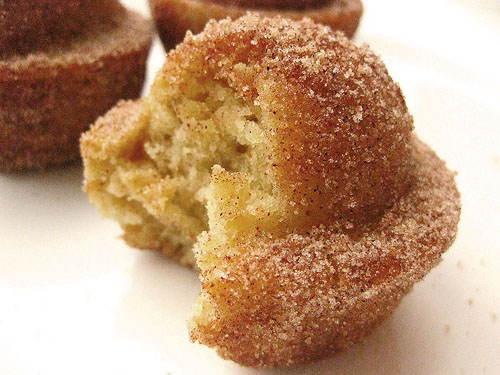 ... in Cinnamon Sugar Crusted Coffee Cake Muffins . ← Previous Next