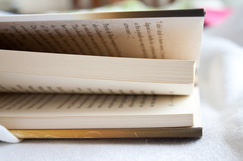 book (4)