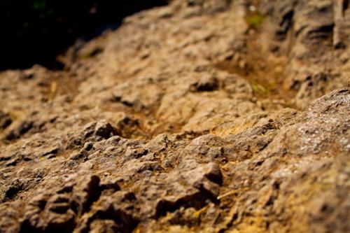 rattlesnake_mountain-11