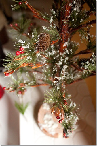 christmas_2011-34