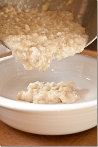oatmeal-17