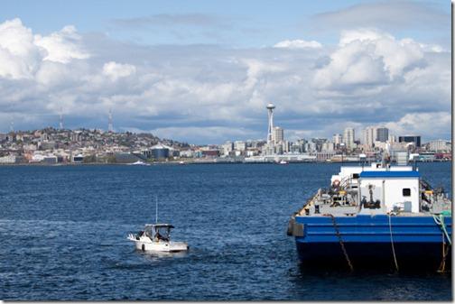 seattle waterfront (17)