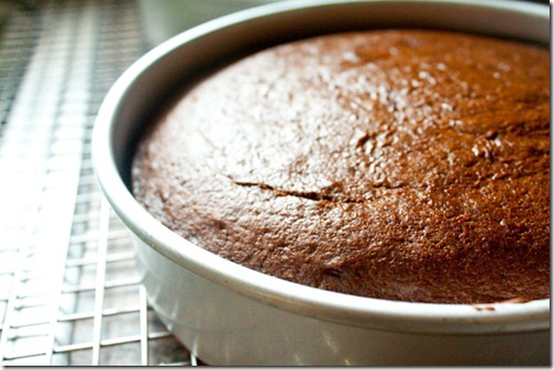 sour_cream_fudge_cake-11