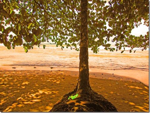 punta uva beach 005_edited-1