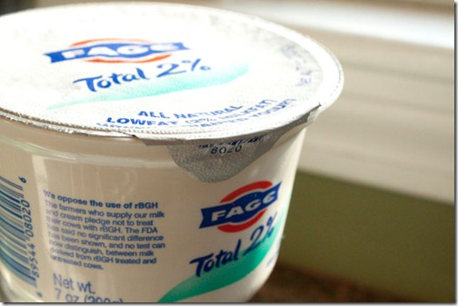 greek_yogurt-1
