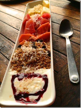 yogurt_granola_la_coralina