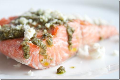 salmon-16