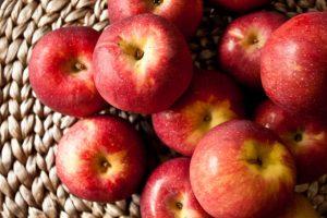 applesauce-7