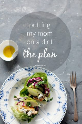 Putting My Mom on a Diet: The Plan