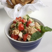 canned salmon salad with cucumber feta mint