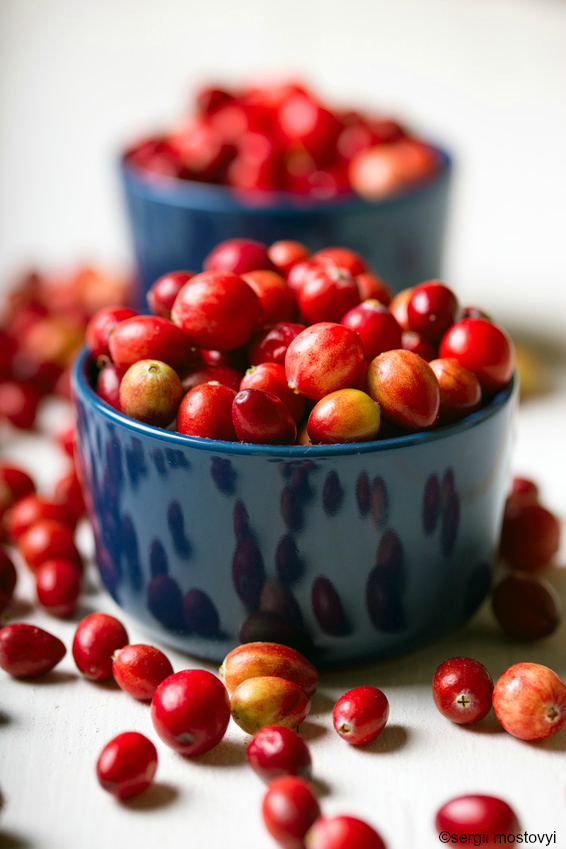 Recipes Using Fresh Cranberries and Leftover Cranberry Sauce!