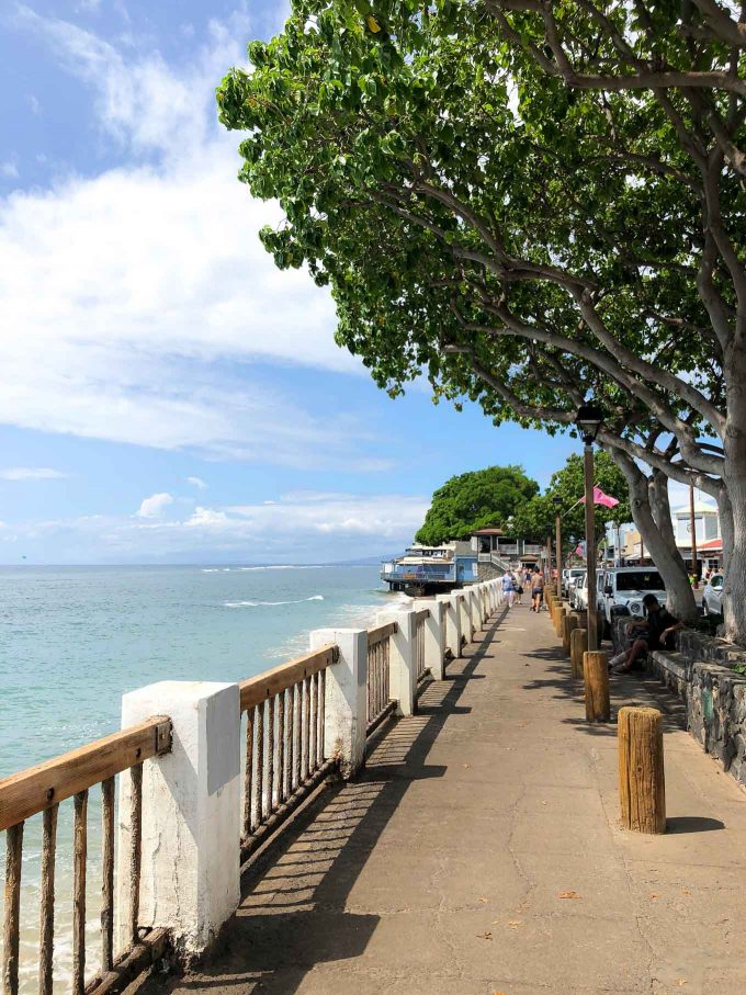 day trip to lahaina in maui hawaii