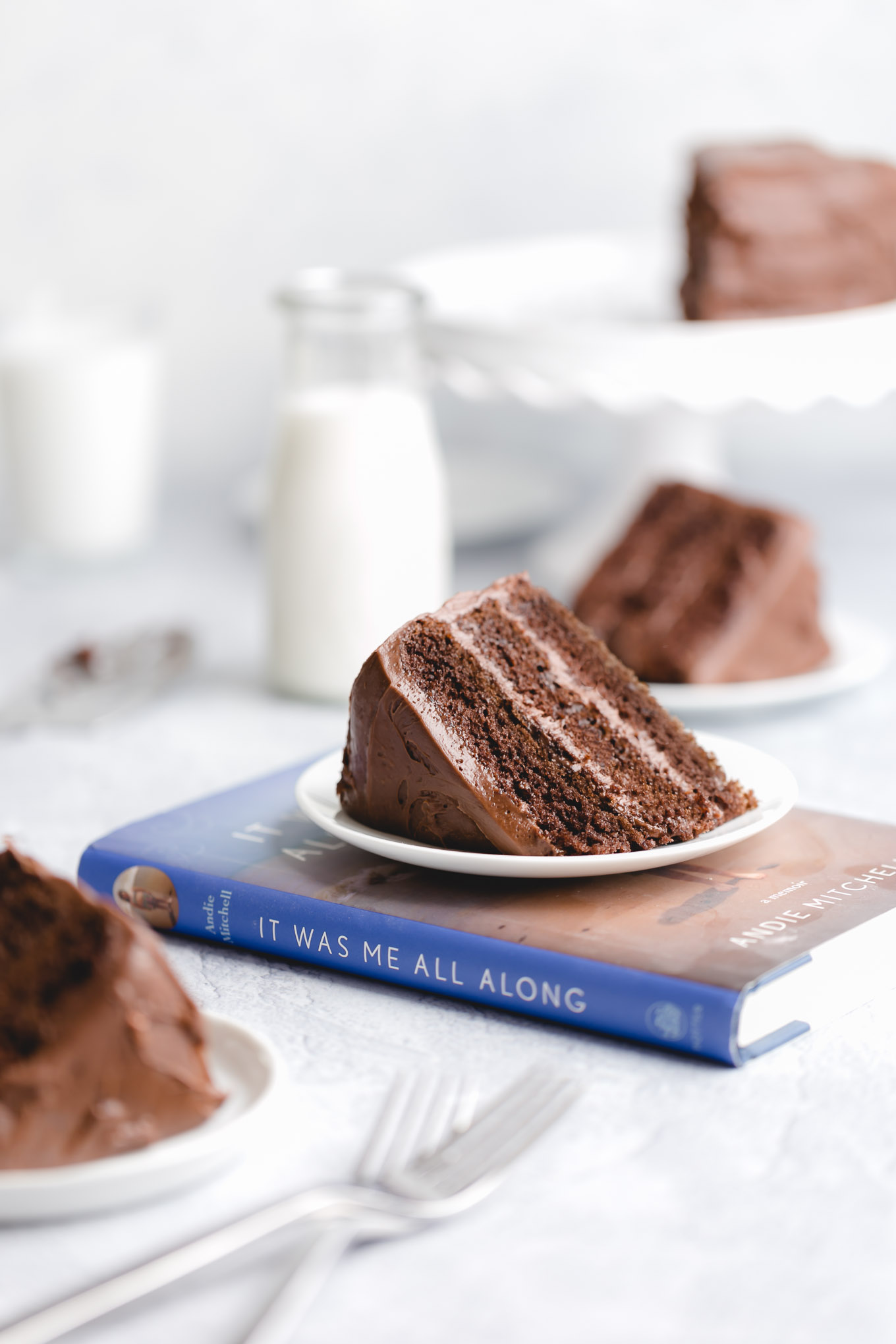 chocolate_cake_it_was_me_all_along-1