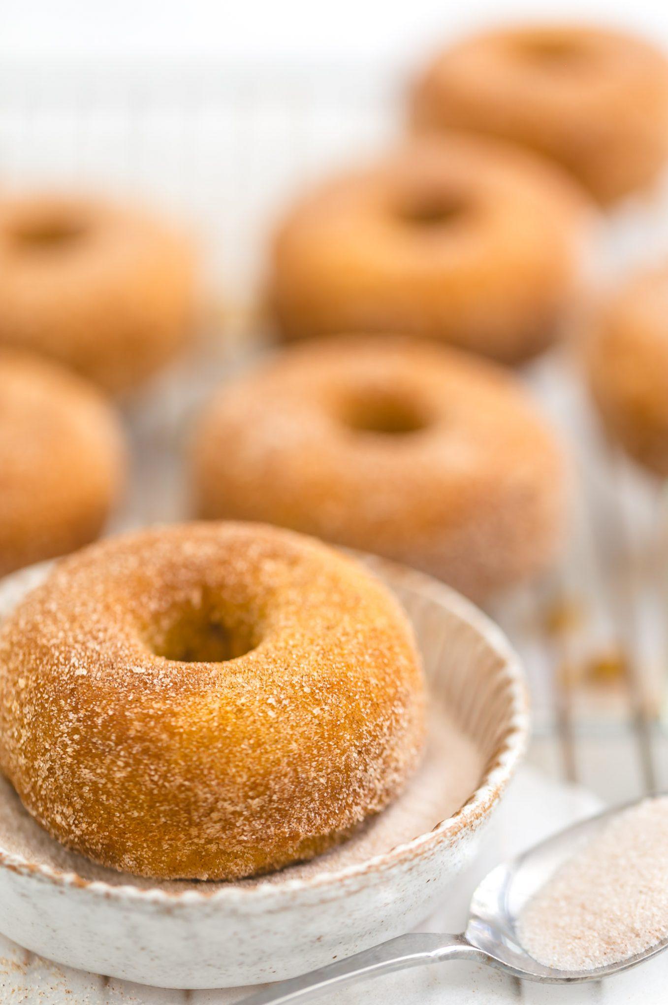 cinnamon sugar coating for donuts