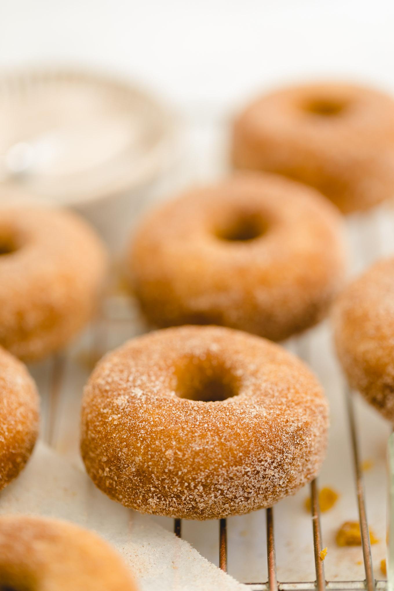 baked pumpkin donuts with cinnamon sugar coating